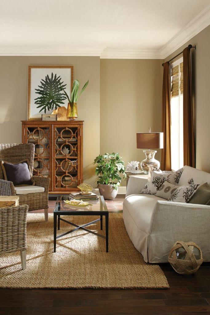 Living room in Practical Beige color palette