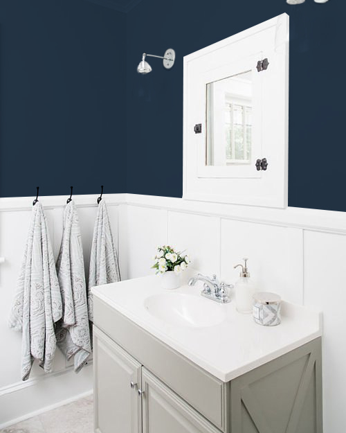 bathroom with navy blue walls