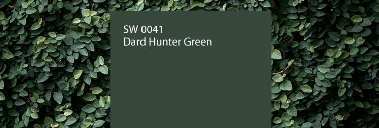 Dard hunter green color swatch