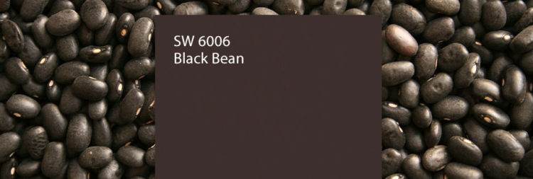 black bean color swatch