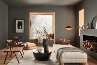 Color of the Month January 2021: Urbane Bronze