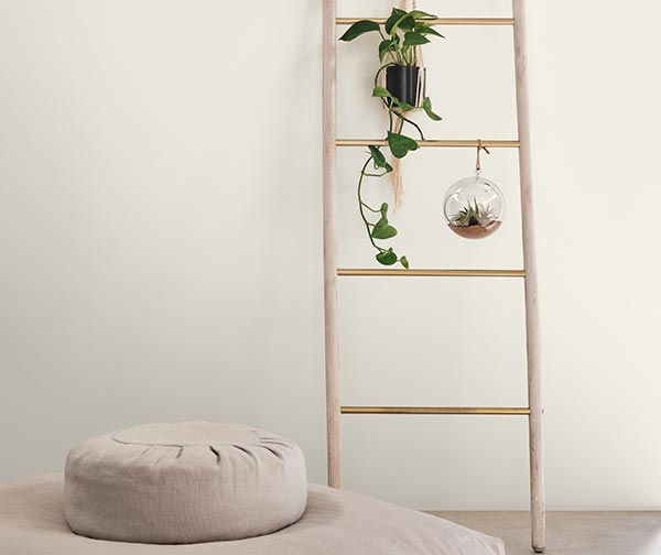 A meditation cushion in front of a ladder from which hangs a pothos plant and an air plant.