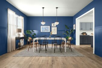 Color of the Month June 2021: Commodore