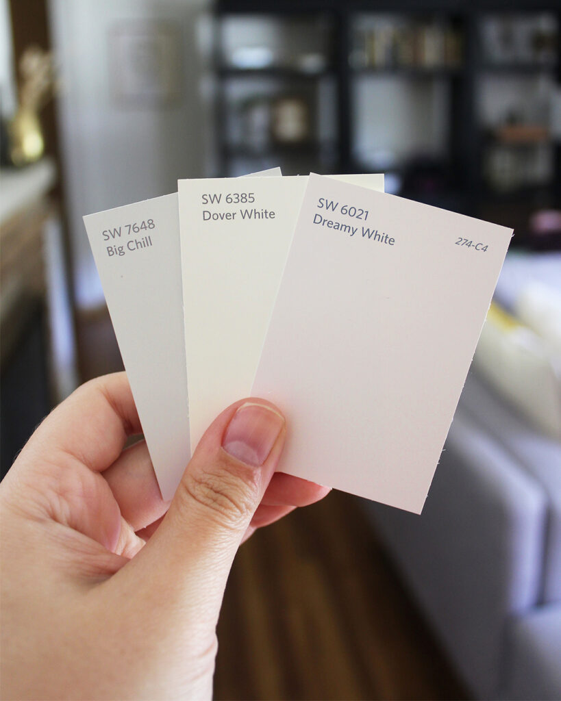 Hand holding three fanned out Sherwin-Williams color cards including Big Chill SW 7648, Dover White SW 6385, and Dreamy White SW 6021.