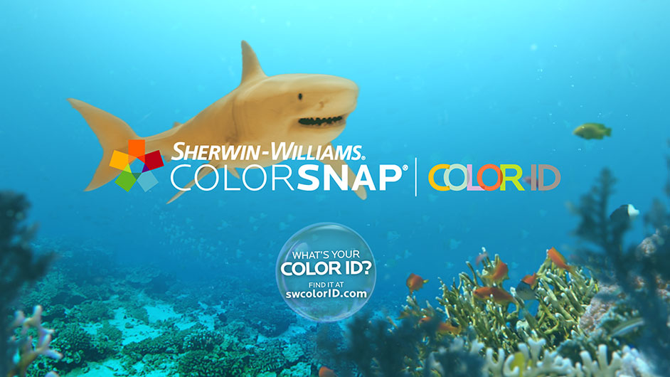 Digital animation of a shark.